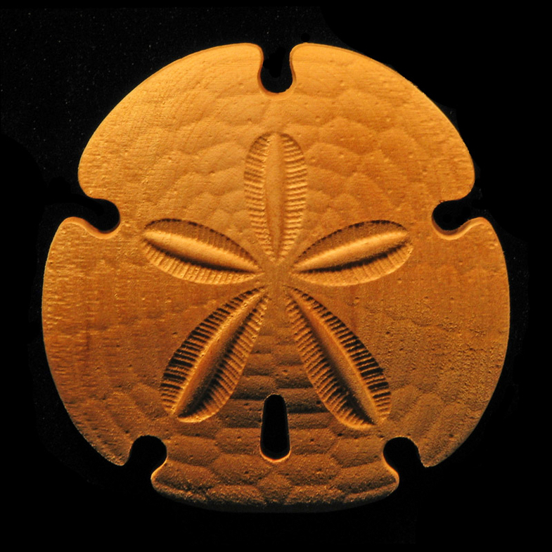 Onlay Sand Dollar Carved Wood