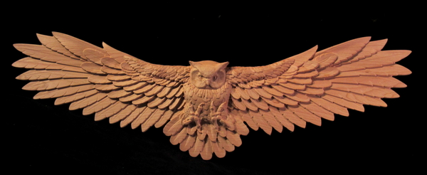 Image Owl in Flight