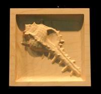 Image Corner Block - Murex Shell