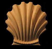 Image Shells and Tropics