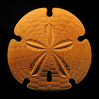 Image Onlay - Sand Dollar