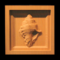Image Corner Block - Conch Shell