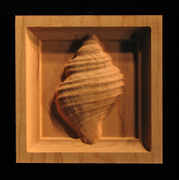 Image Corner Block - Spiral Shell