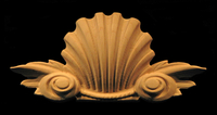 Image Onlay  - Classic Shell w Volutes