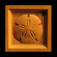 Image Corner Block - Sand Dollar