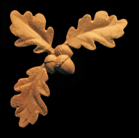 Image Onlay - Corner , Oak Leaves