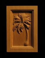 Image Palm Tree