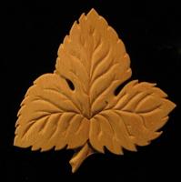 Image Onlay  - Hop Leaf