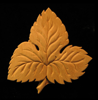 Image Onlay  - Hop Leaf