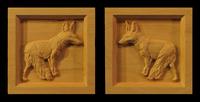 Image Coyote Block