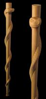Image Snake Staff