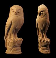 Image Owl Onlay