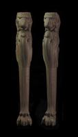 Image Lion Leg