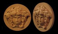 Image Medusa Rosette 2
